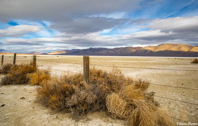 winnemucca, dry lake, nevada