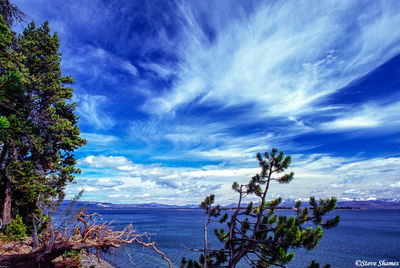 yellowstone lake, national park, wyoming, big sky country
