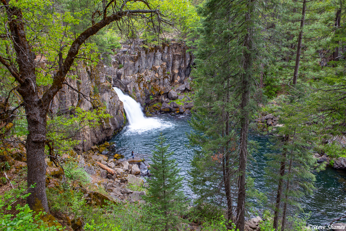 Upper McCloud falls, framed by trees.