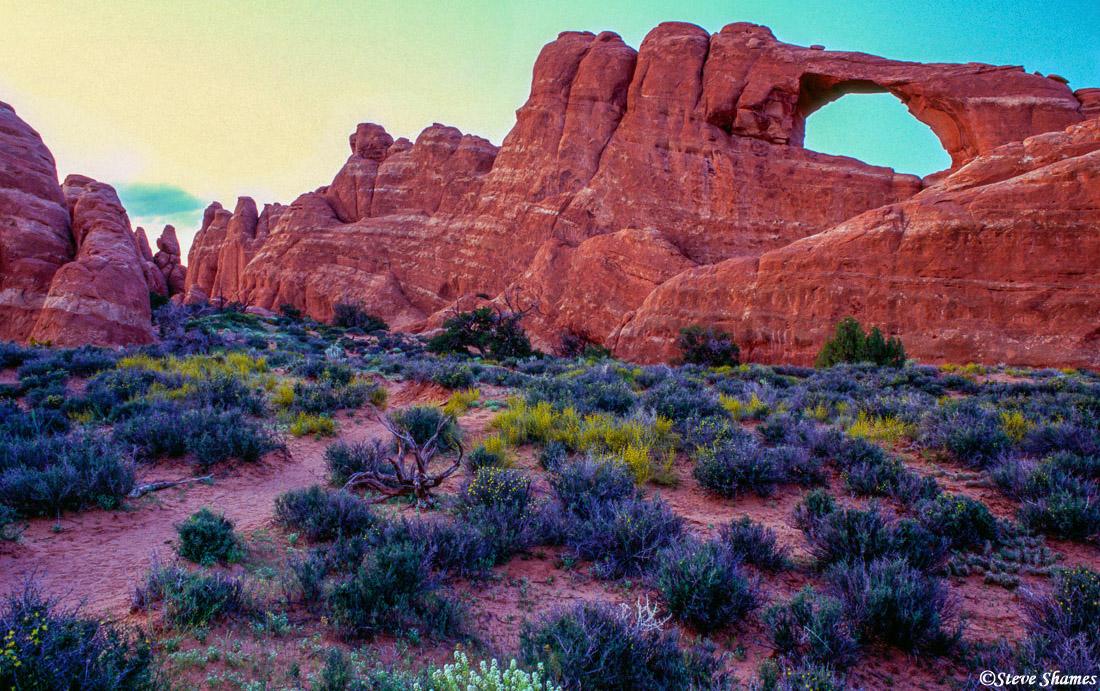arches national park, utah, photo