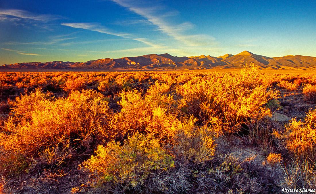 baker nevada, after sunrise, golden light, photo