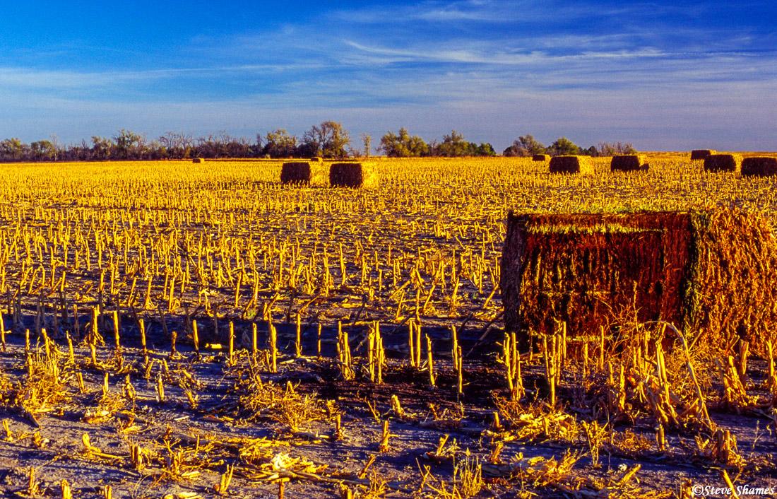 eastern colorado, bales of hay, photo