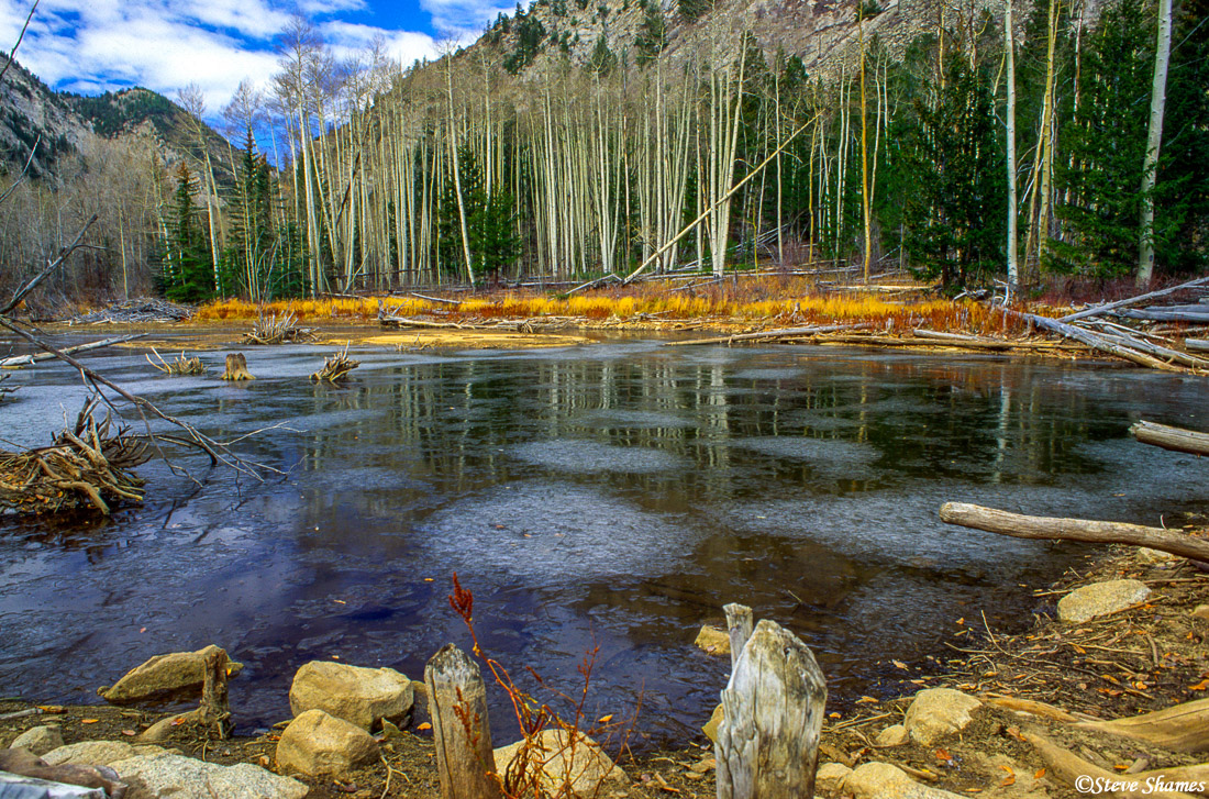 rocky mountain national park, colorado, beaver pond, photo