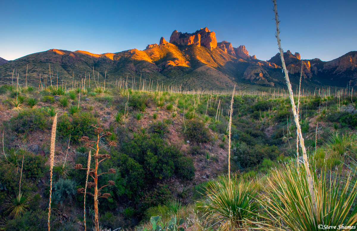big bend sunset, national park, west texas, chisos basin road, photo