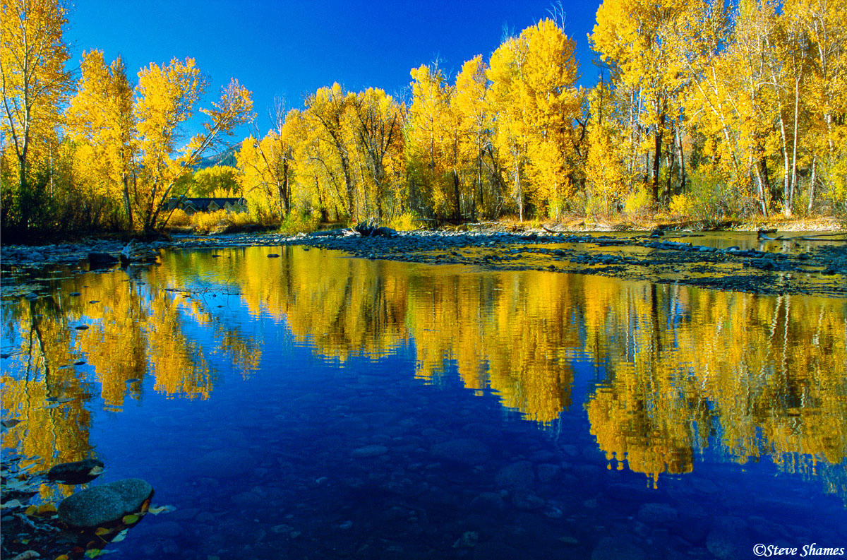 ketchum idaho, fall colors, big wood river, photo