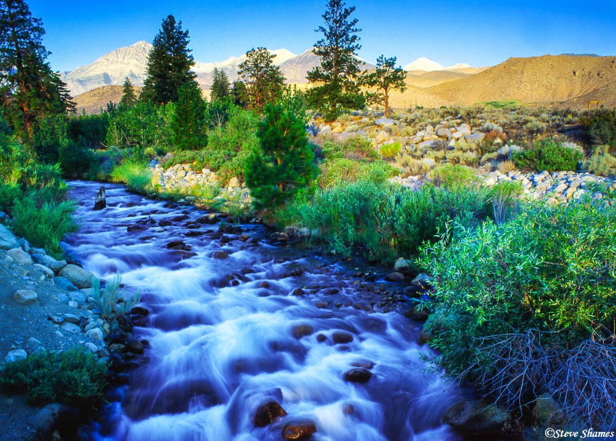 bishop, california, babbling creek, photo