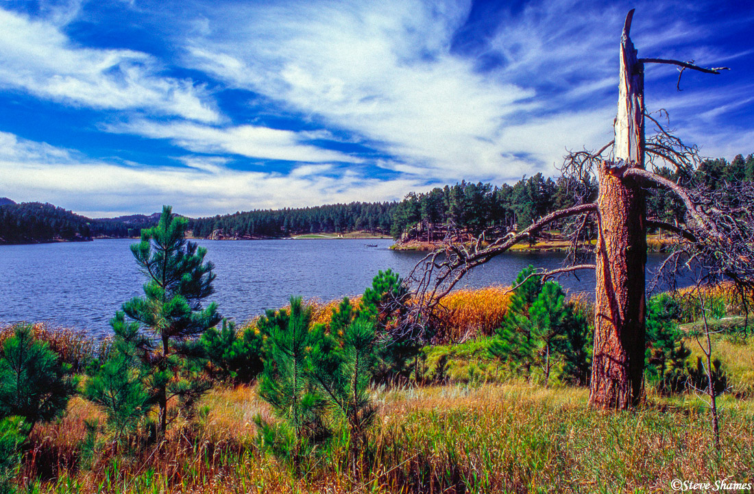 black hills, south dakota, colorful scene, photo