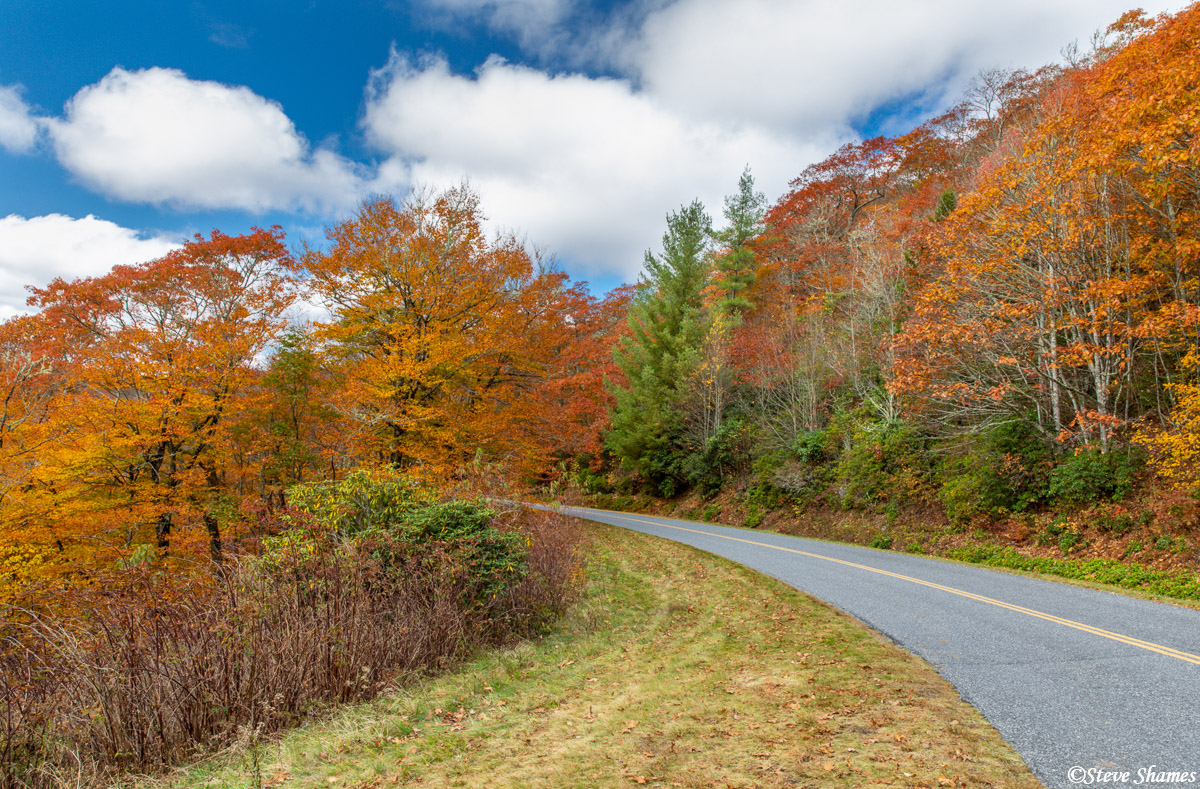 A colorful stretch along the Blue Ridge Parkway.