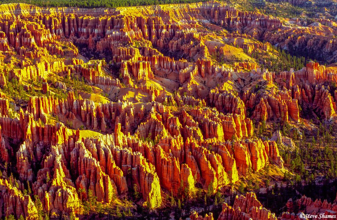 bryce canyon, national park, utah, hoodoo, rock spire, photo