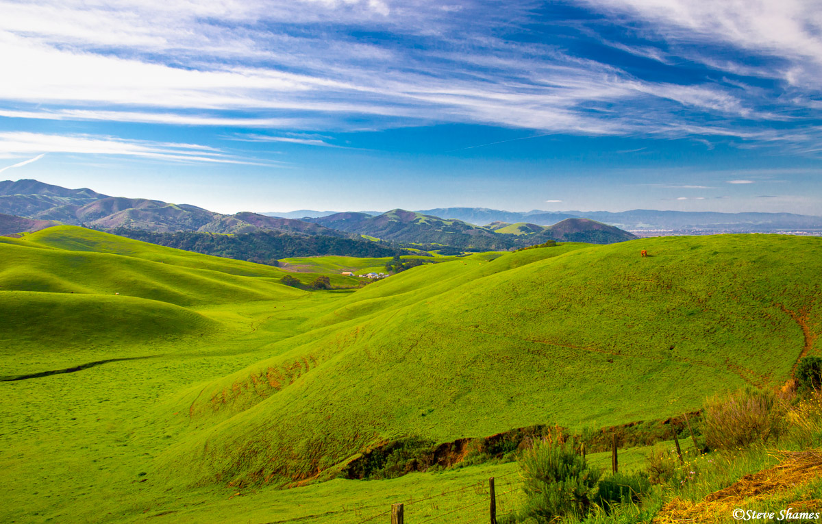 california rolling hills, coastal range, monterey county, photo