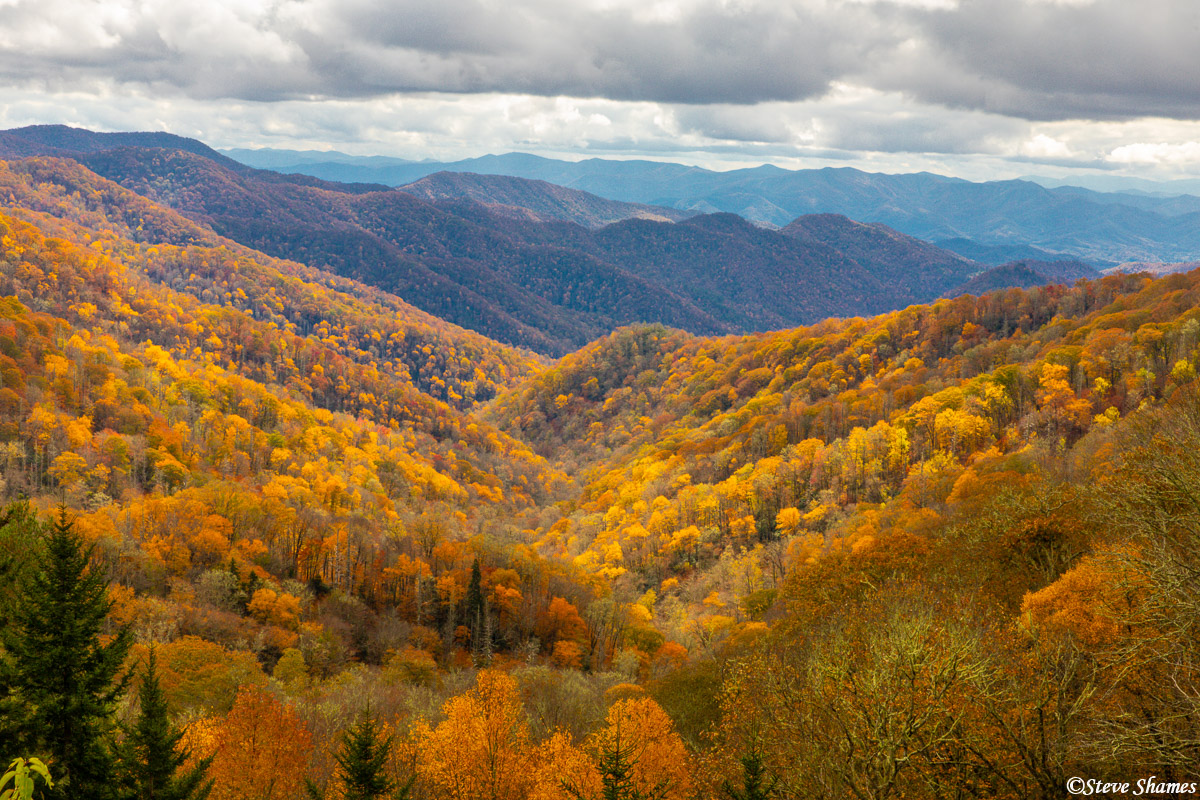 Part of Smokey Mountains National Park is in North Carolina. Here is some Carolina mountains fall color.