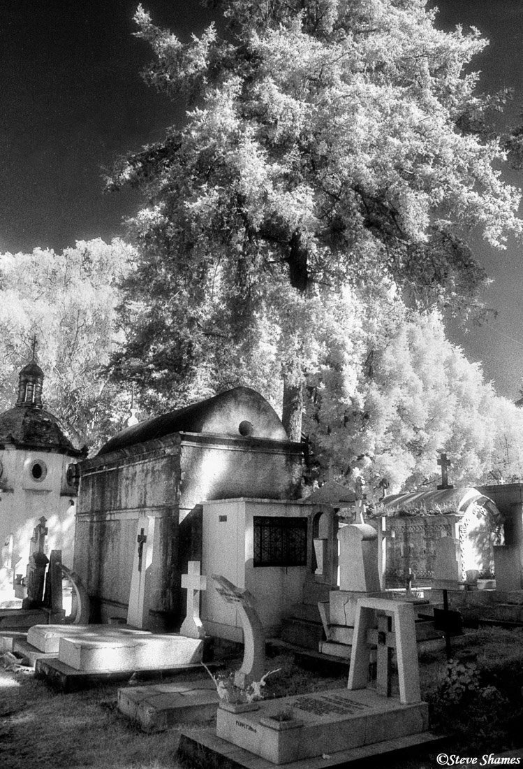 morelia cemetery, mexico, infrared film, photo