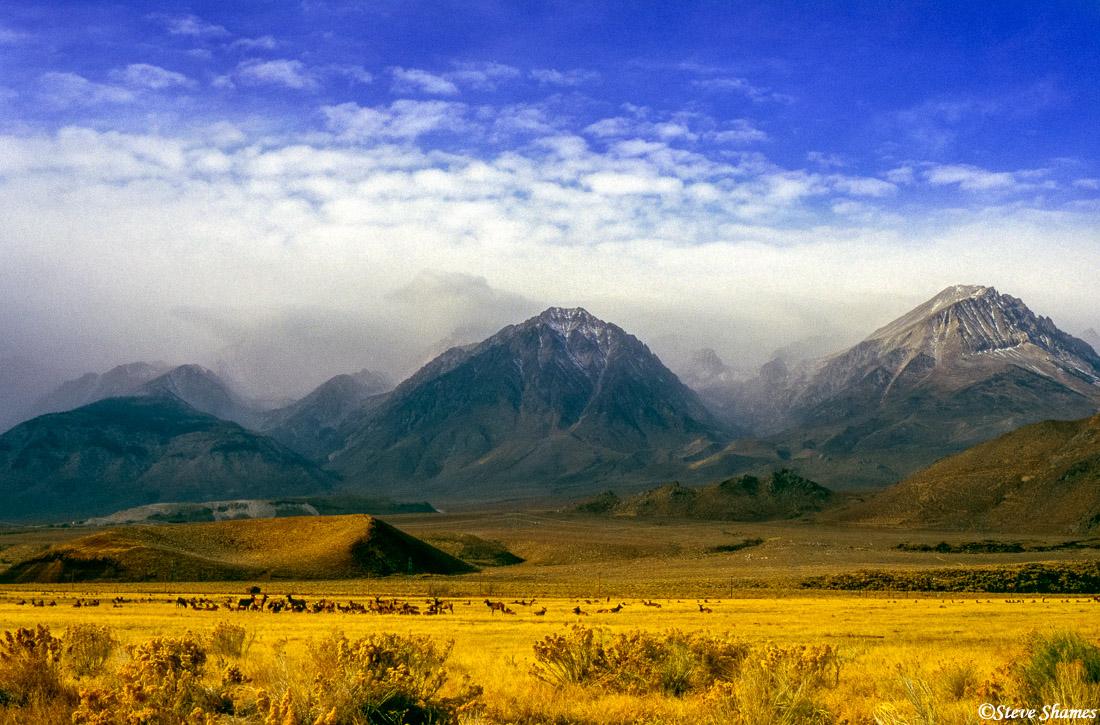 bishop, california, sierra mountains, clouds, photo
