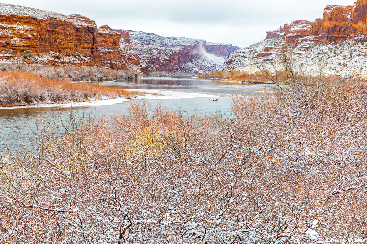 Just north of Moab, the Colorado River with fresh snow.