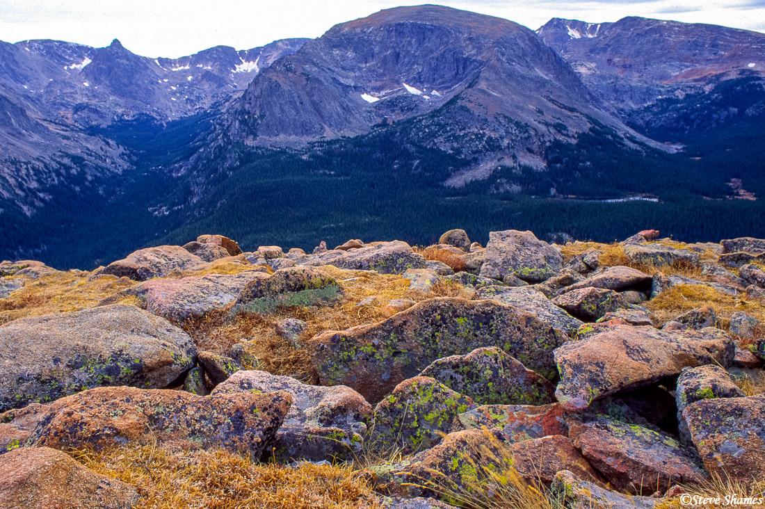 rocky mountain national park, colorado, colorful lichen, photo