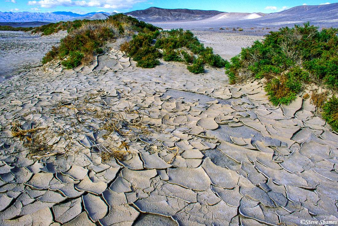 death valley, national park, cracked ground, extreme heat, photo