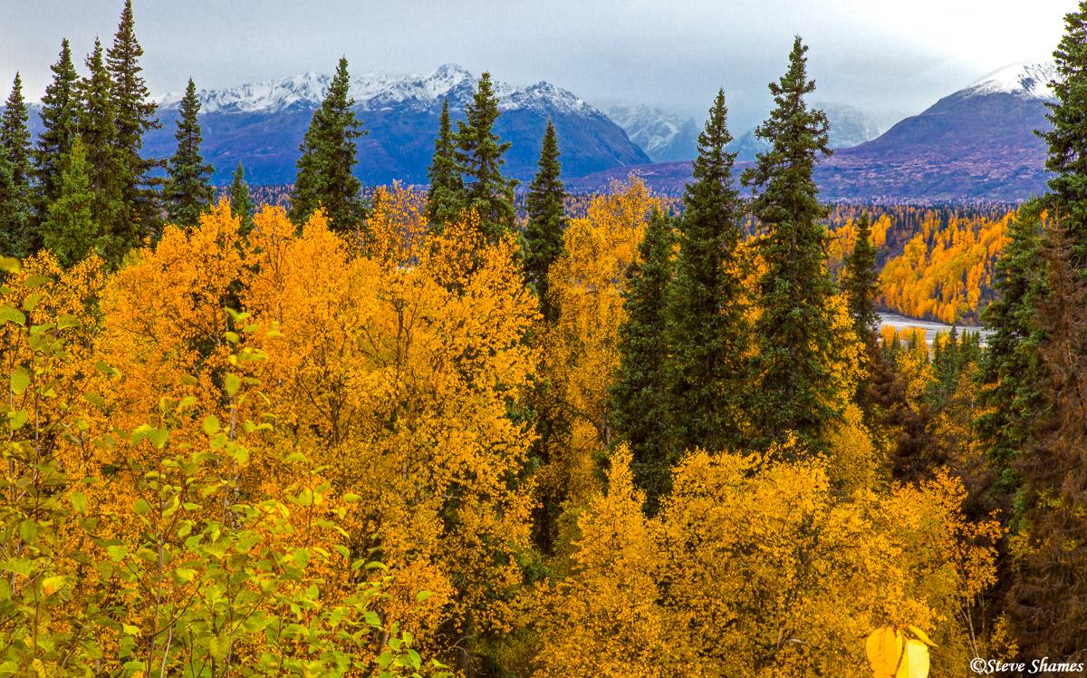 denali state park, alaska range, photo