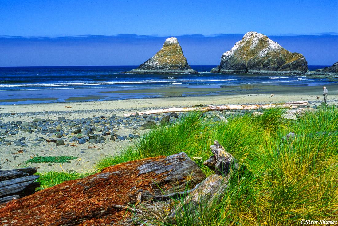 devils elbow state beach, oregon coast, photo