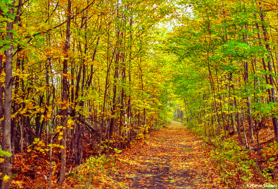 vermont road, fall colors, new england, photo