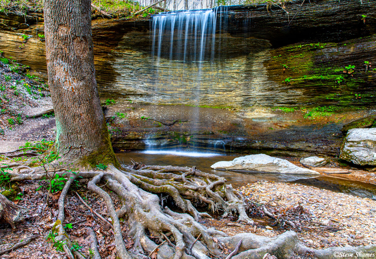 A nice little waterfall along the Natchez Trace Parkway in Tennessee.