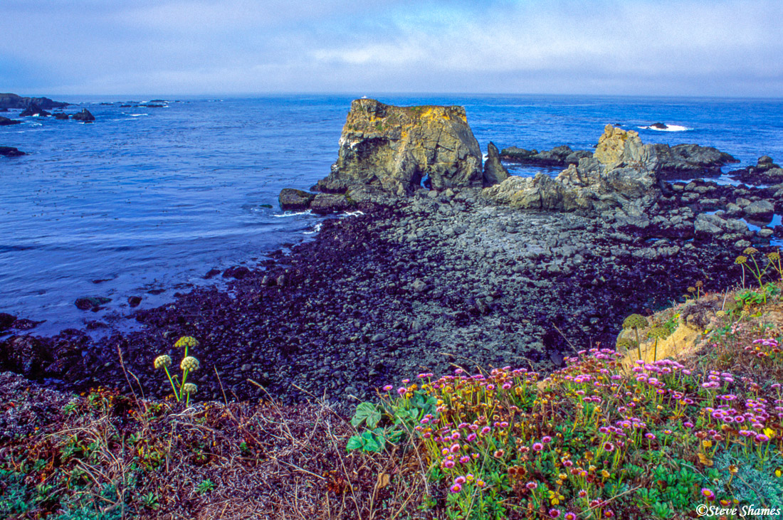 mendocino county, fort bragg, california, photo