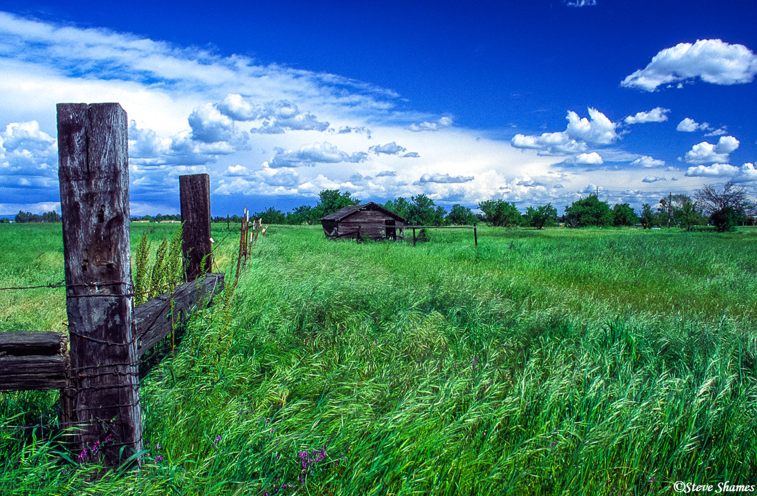 elverta, rural scene, sacramento valley, california, photo