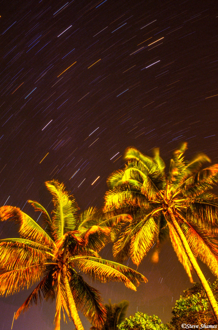 hawaii, big island, kailua kona, palm trees, condo, photo