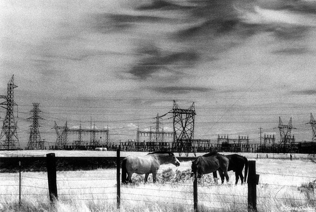 rural sacramento county, california, powerlines, photo