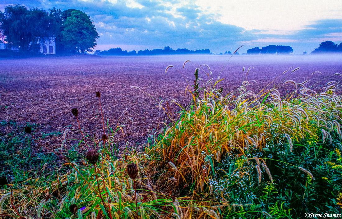 indiana farmlands, sunrise, photo