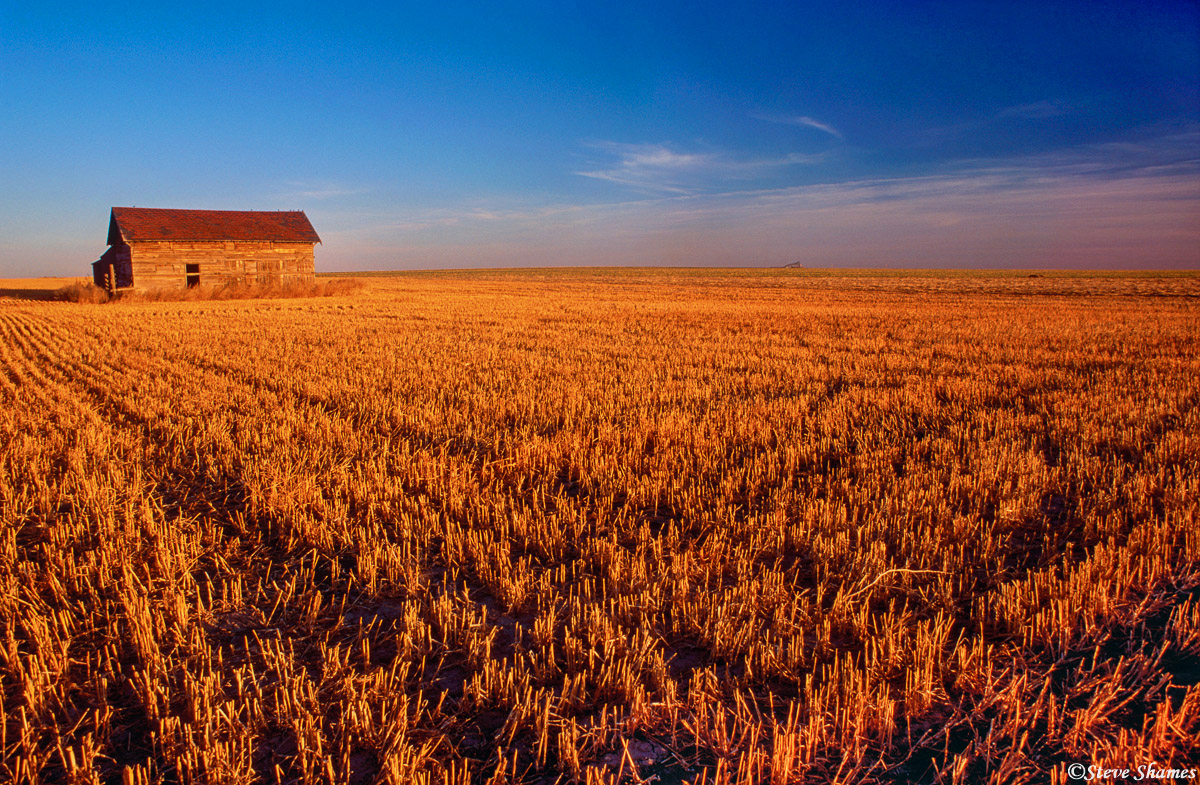 pawnee national grasslands, colorado, grassy fields, photo