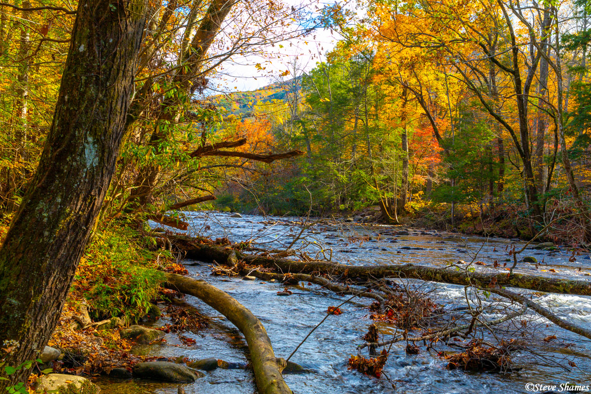 Little River runs through the national park. This time of year it is especially scenic with the fall colors.