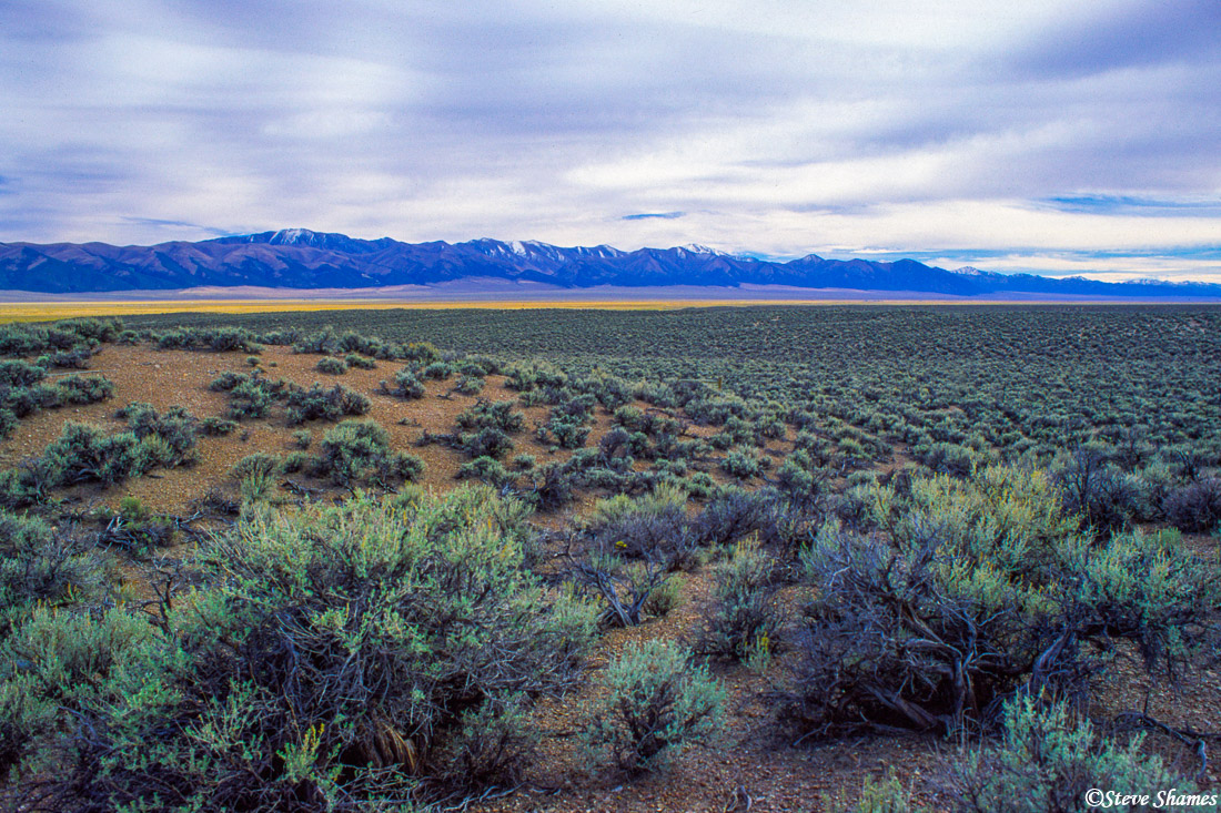 middle of nowhere, nevada, photo