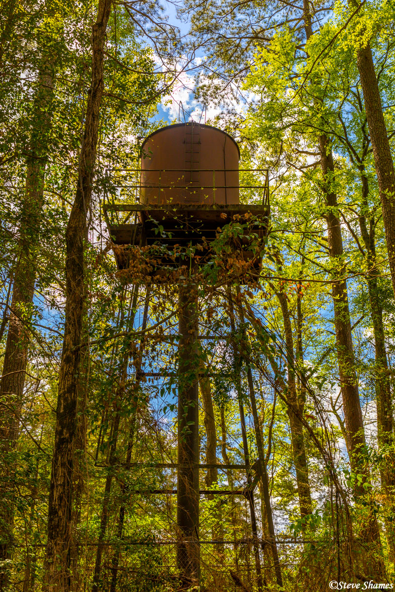 I liked the looks of this water tower, nestled in the woods in Mississippi.
