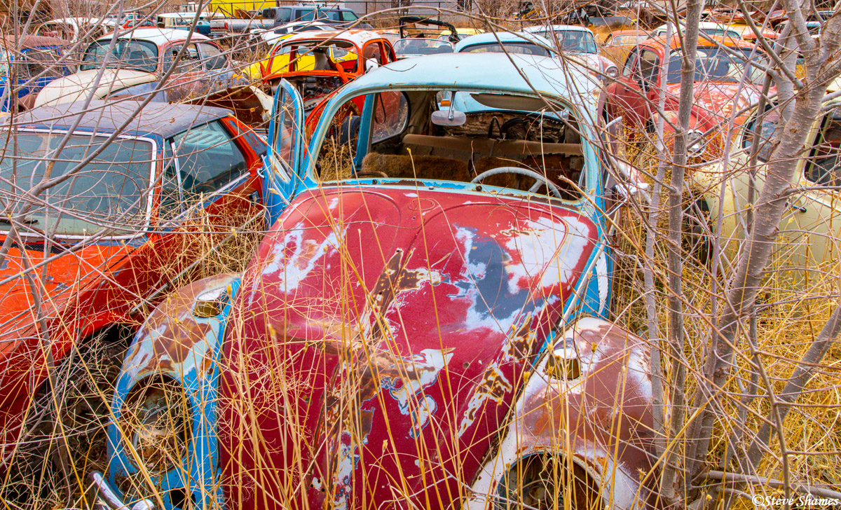 We came across a Volkswagen junkyard in Moab. I really liked browsing around all these colorful beetles.