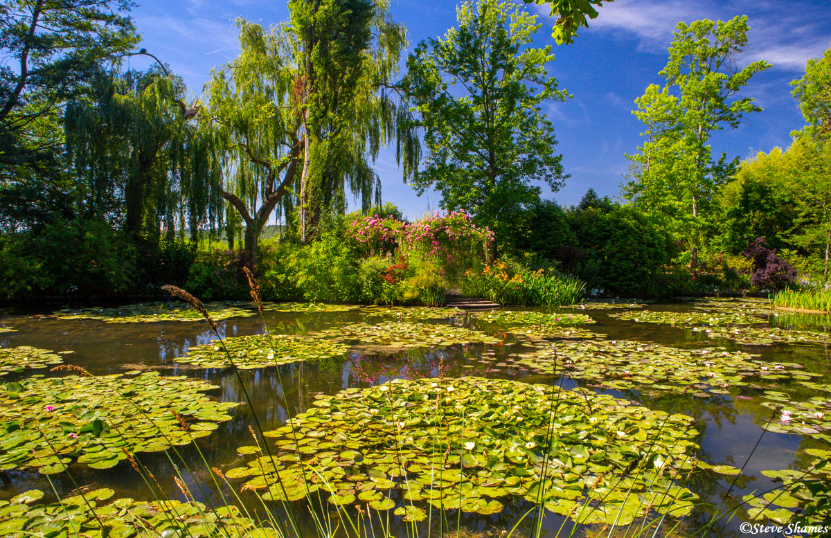 monet's garden, giverny, france, photo