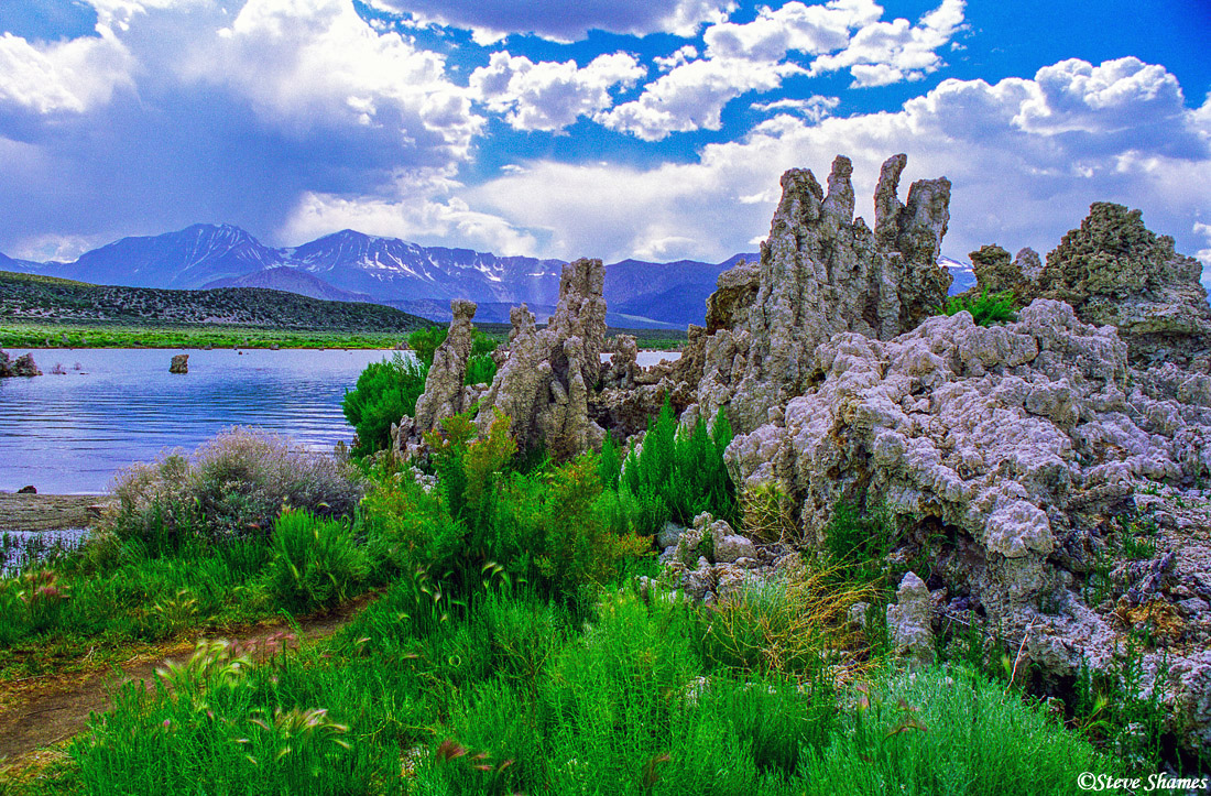 mono lake, california, tufas, lake level, photo