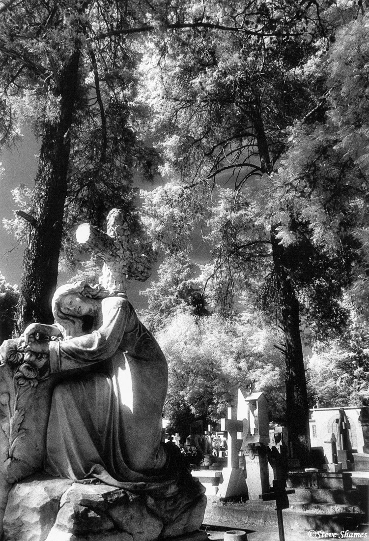 morelia cemetery, mexico, photo