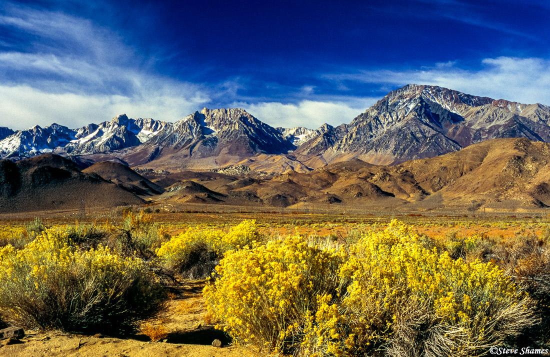 sierra nevada mountains, owens valley, bishop, photo
