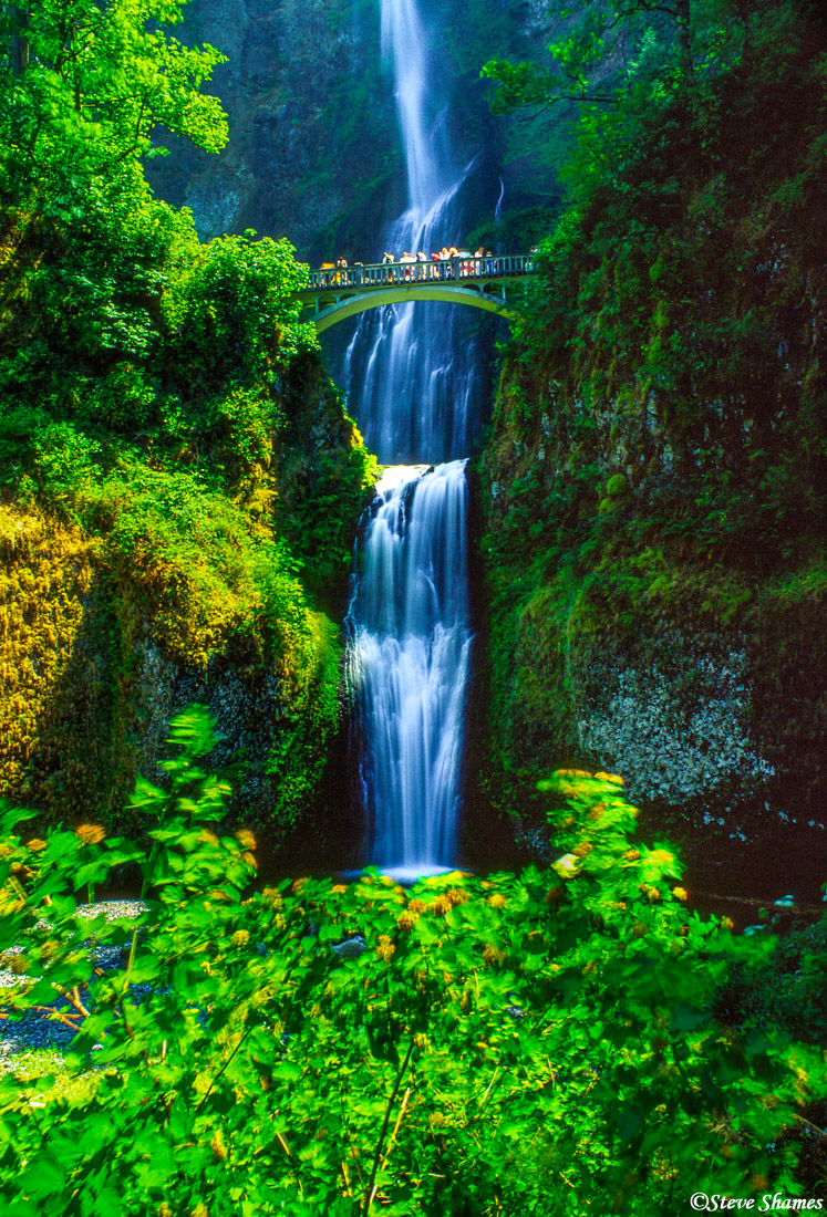multnomah falls, columbia river gorge, oregon, tourist attraction, photo