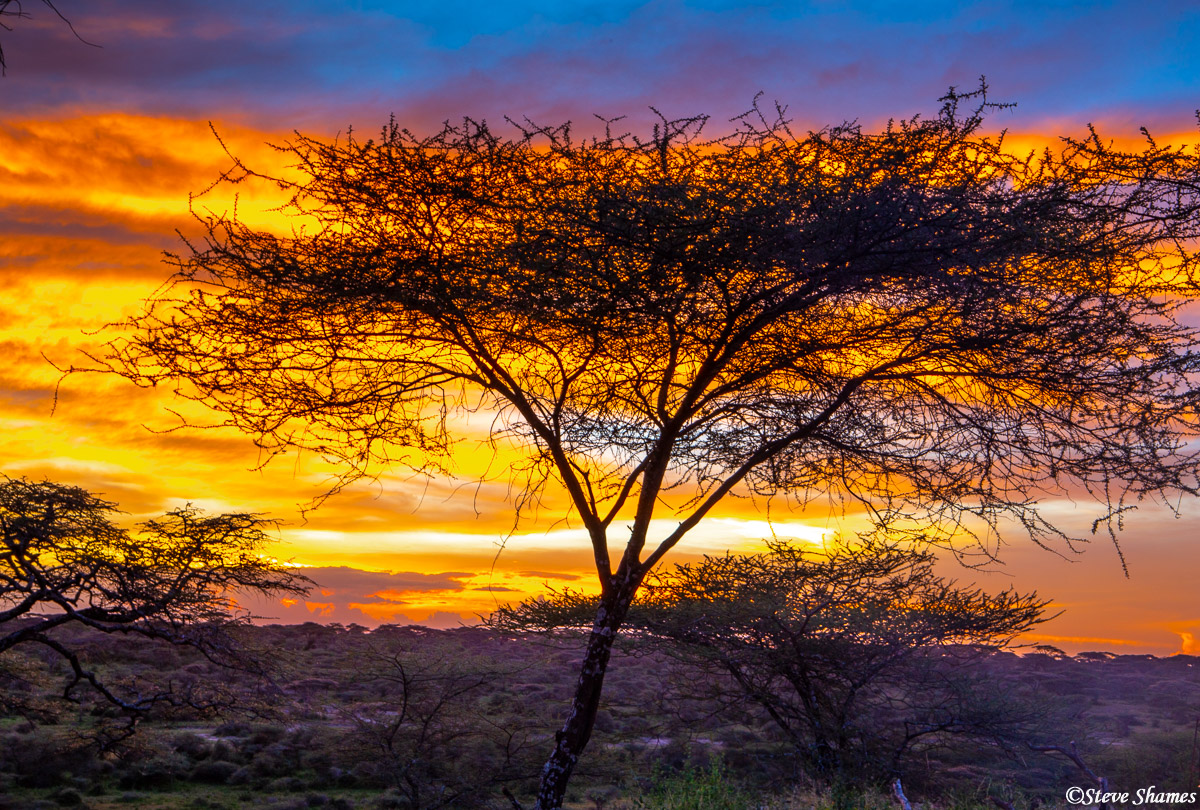 serengeti sunset, tanzania, ndutu camp, photo