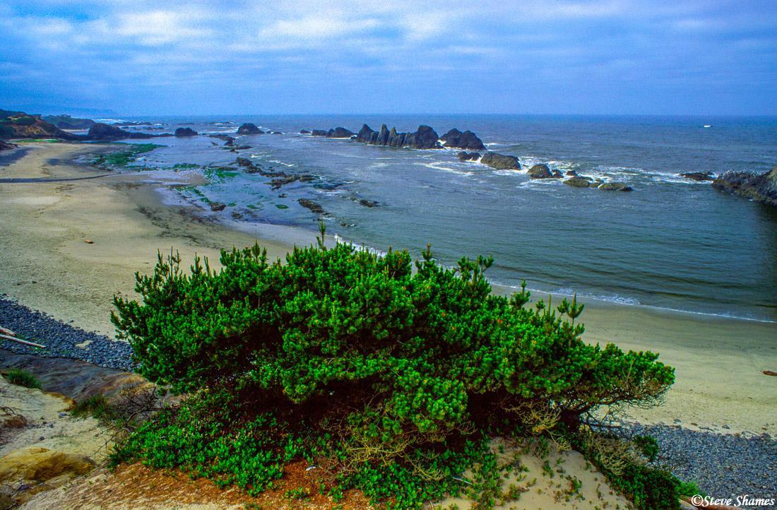 oregon coast, newport, ocean scene, photo