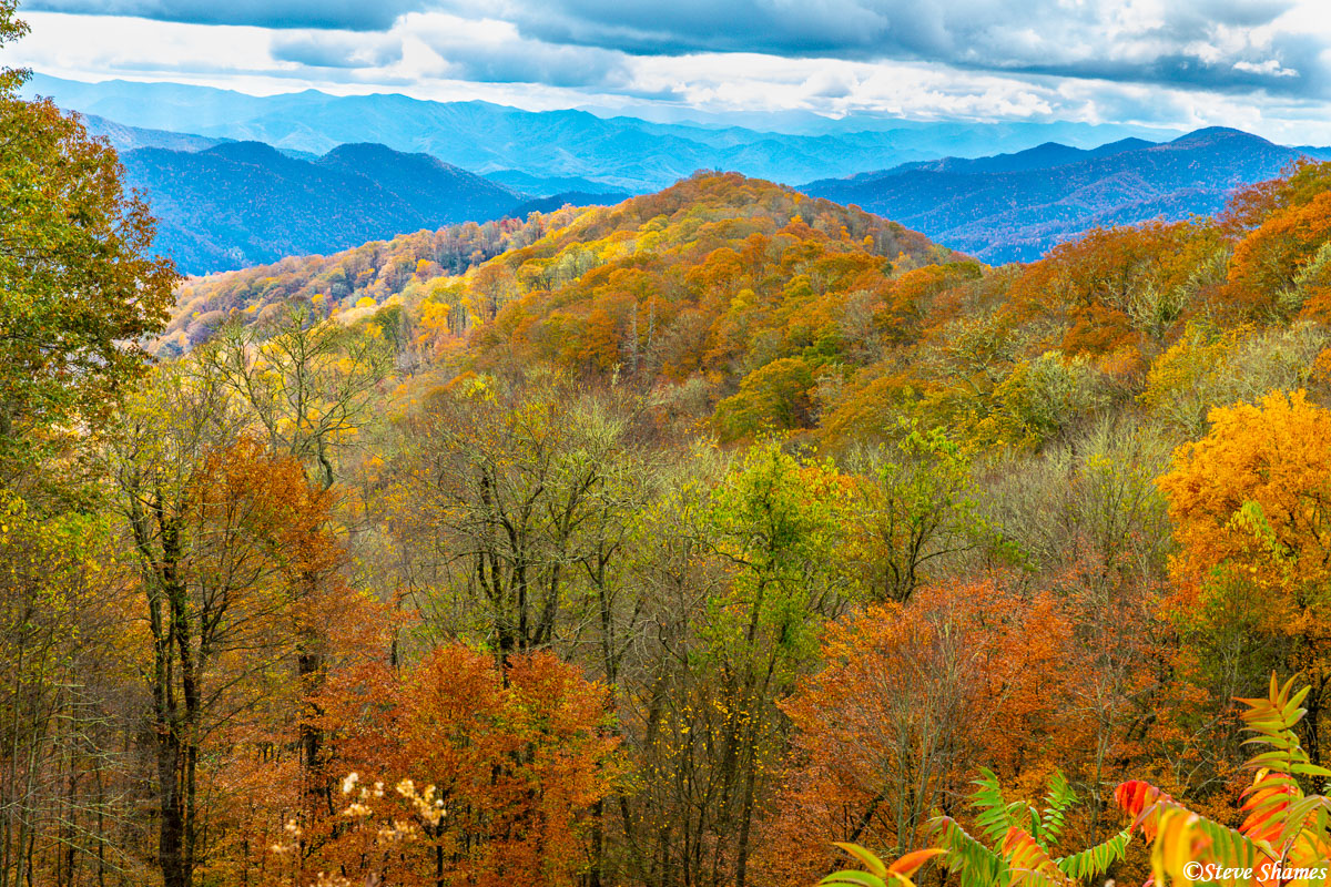 Beautiful fall colors on the North Carolina side of Great Smokey Mountains National Park.
