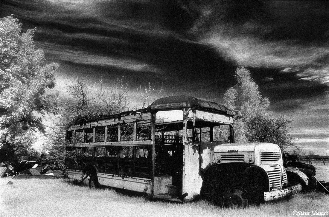 rio linda, old school bus, junked, photo