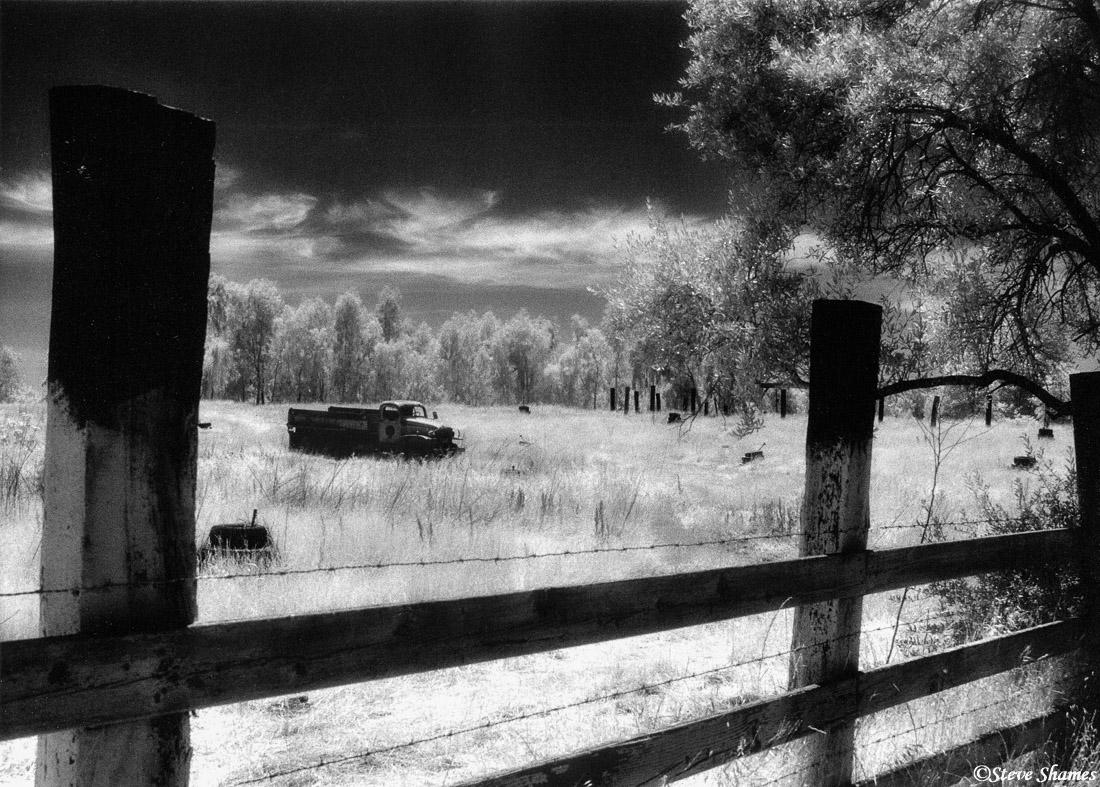 rio linda, california, old junked truck, rotting away, photo