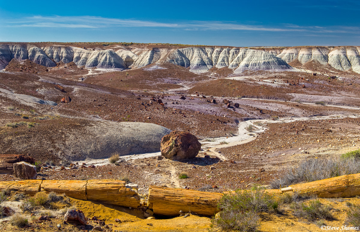 petrified forest, national park, northern arizona, photo
