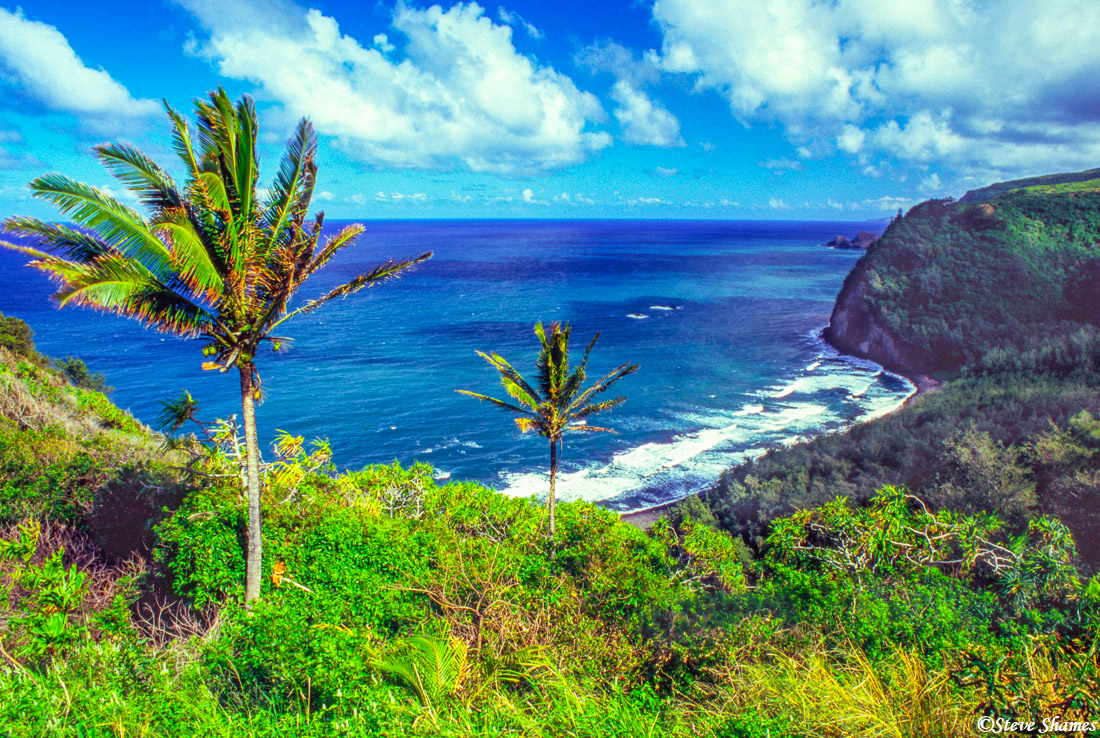 pololu valley, overlook, big island, hawaii, photo