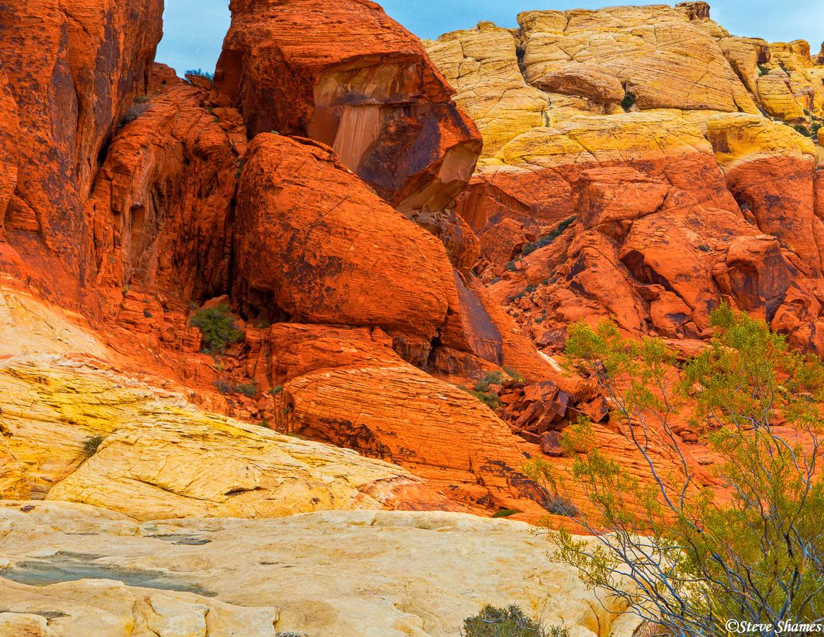 red rock canyon, nevada, photo