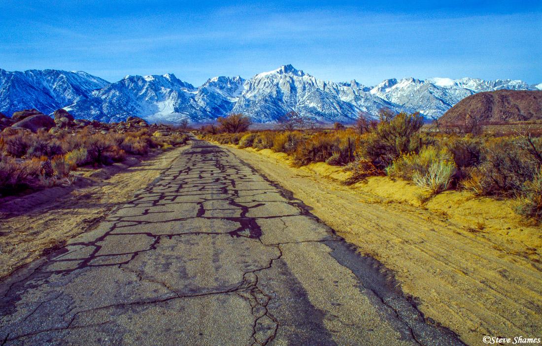 lone pine, eastern california, sierras, photo