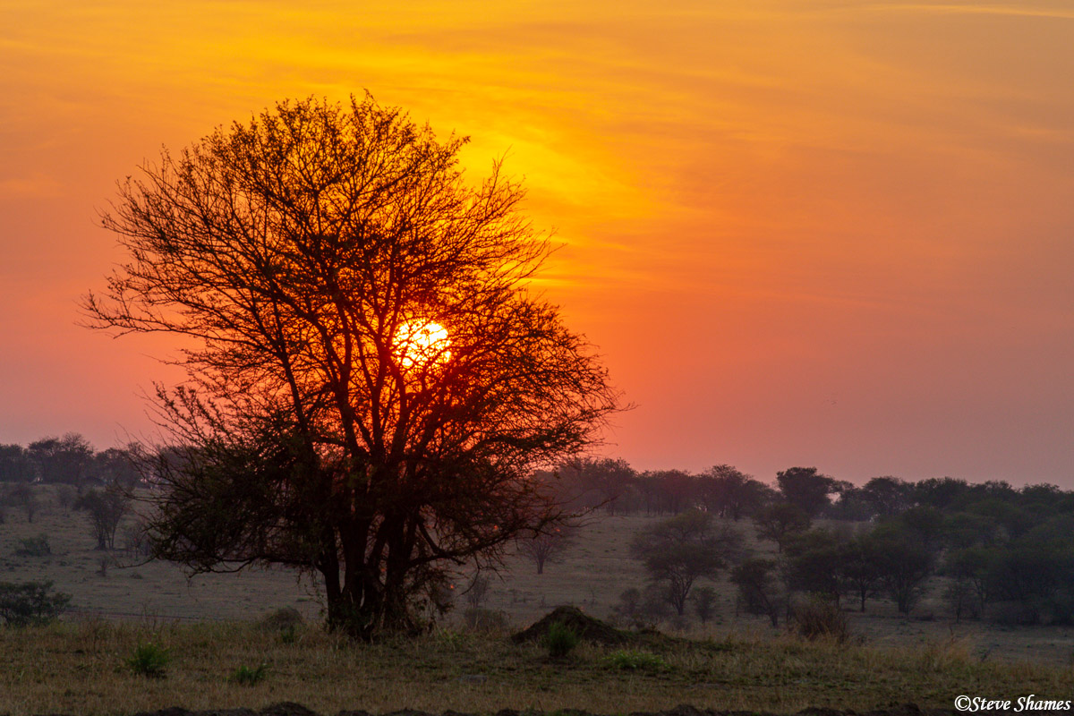 Sunrises and sunsets always seem more grand in Africa.
