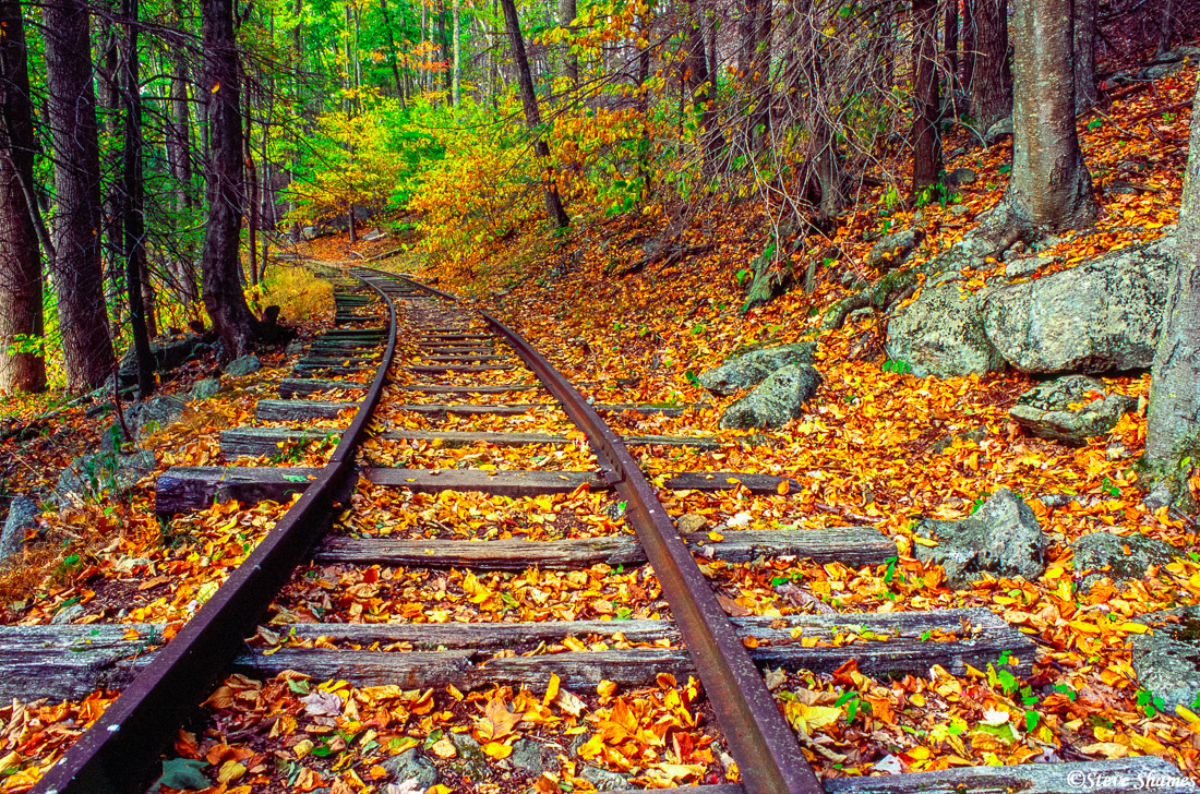 railroad tracks, shenandoah, national park, virginia, dead leaves, photo